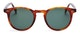 InStitchu Accessories sunglasses Pacifico Optical Buckler Whiskey Havana with Green Lens