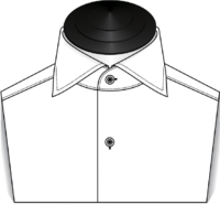 The Cutaway Collar
