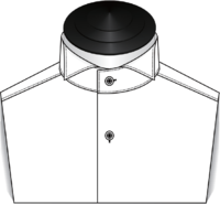The Wing Tip Collar Tuxedo Shirt